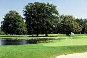 Schwungvoll golfen