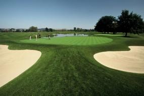 Golf Pur